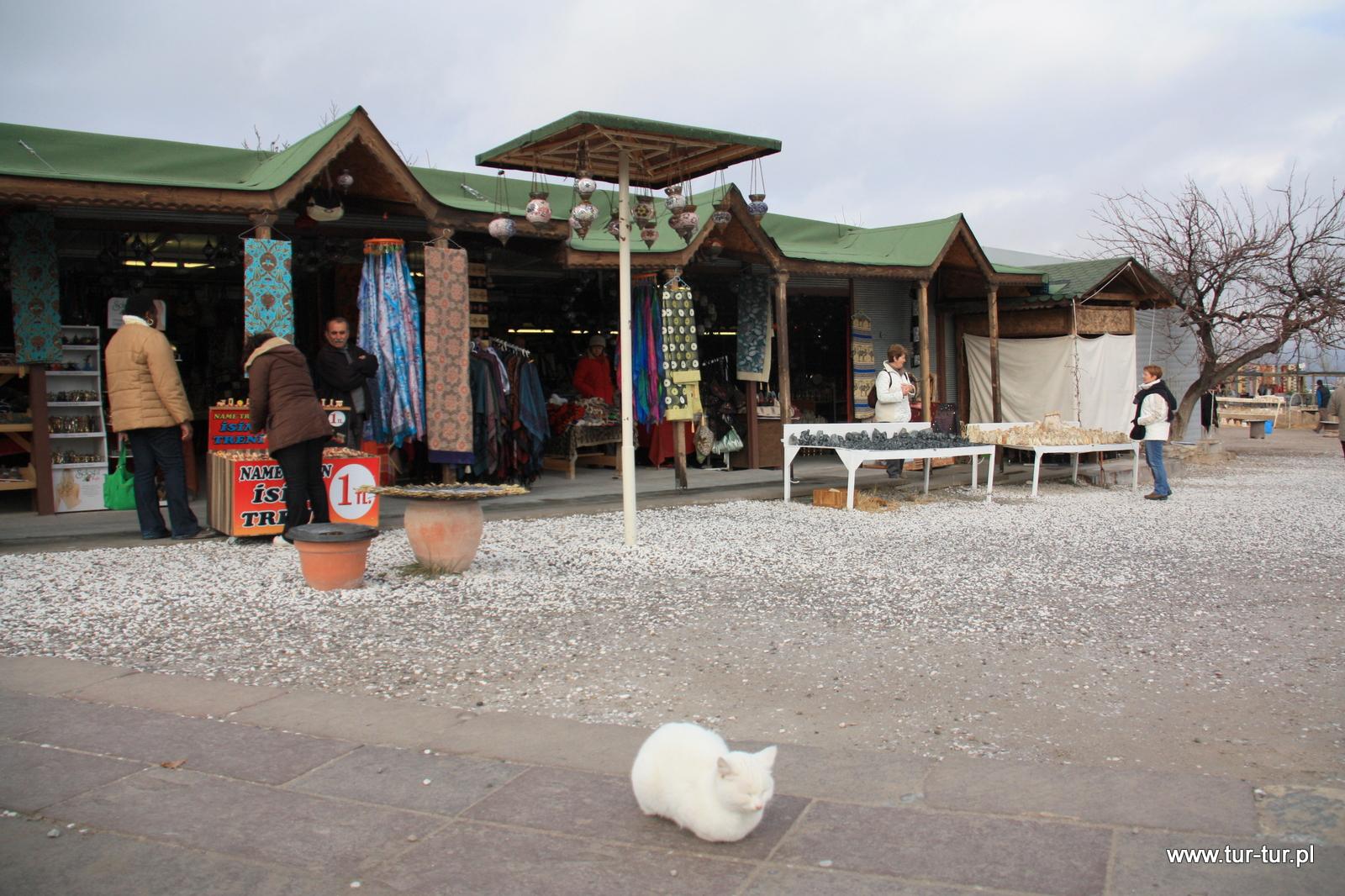 Kot medytujący w Kapadocji
